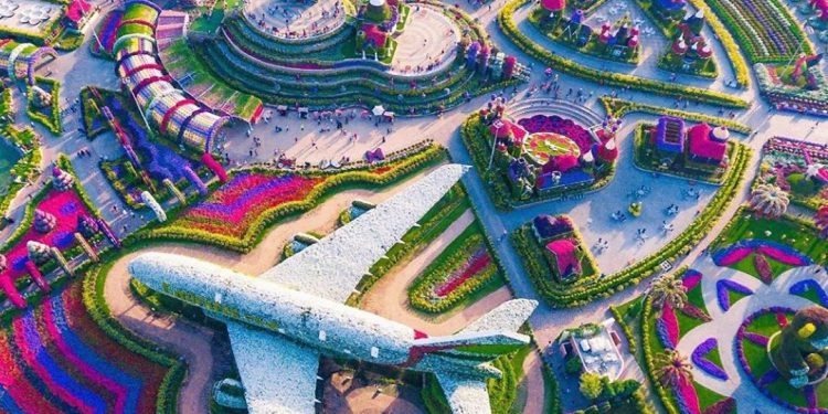 emirates flower garden in Dubai