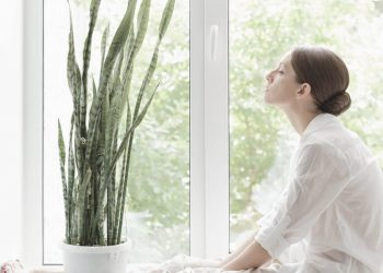 5 Best Air Purifying Plants For The Home