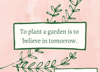 best quotes for plant lovers
