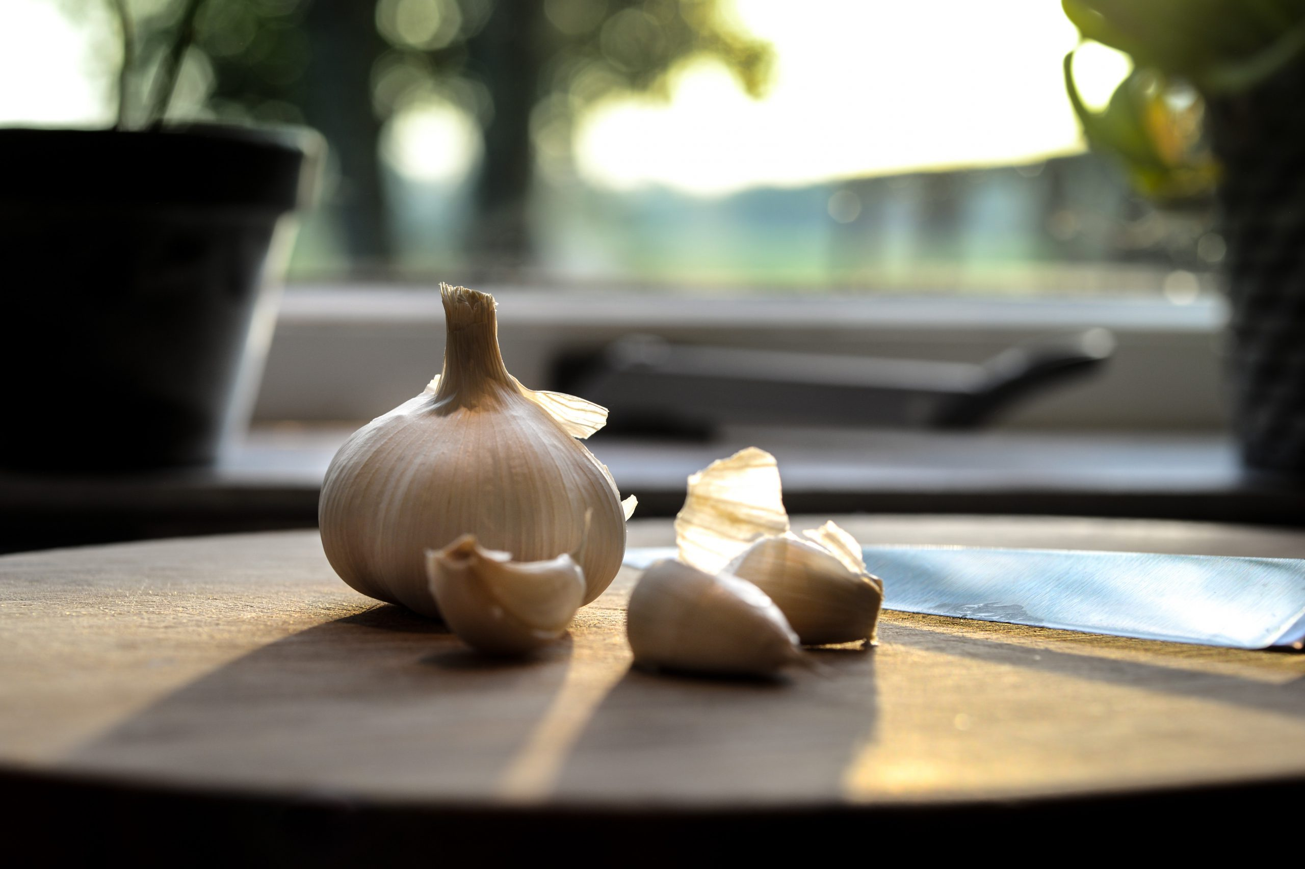 close up picture of garlic with sunset
