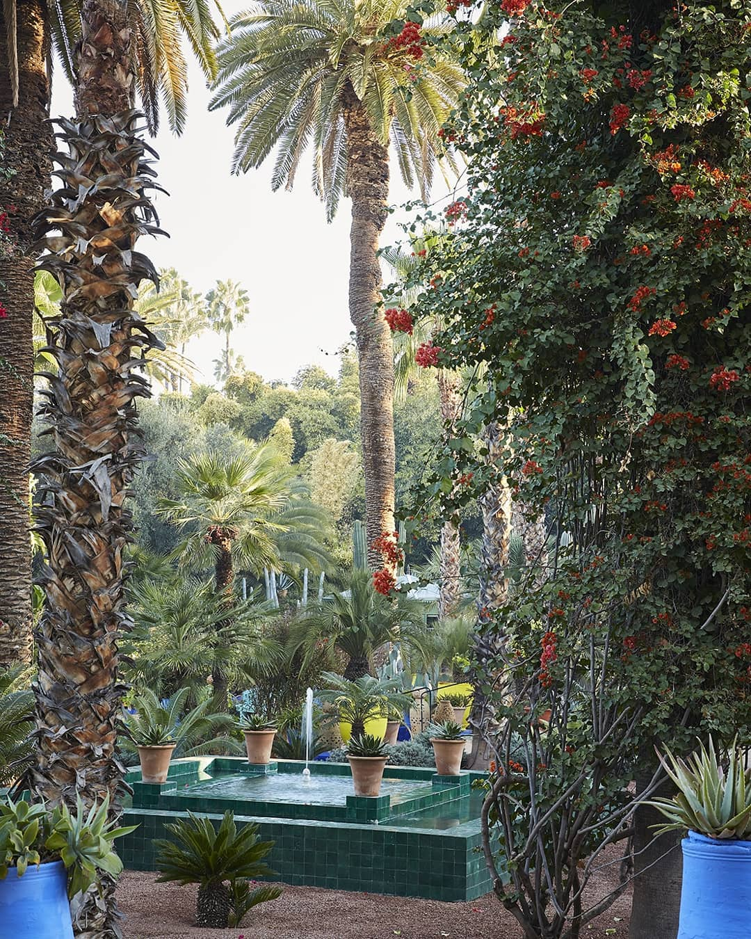 View into the garden of Jardin Majorelle with water fountain