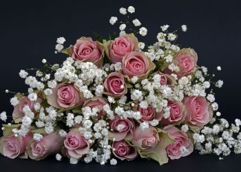 rose flowers arrangement in a triangular shape