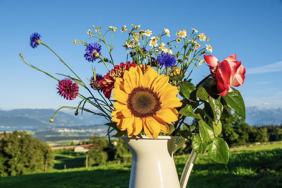 arrangement of sunflowers in a vase