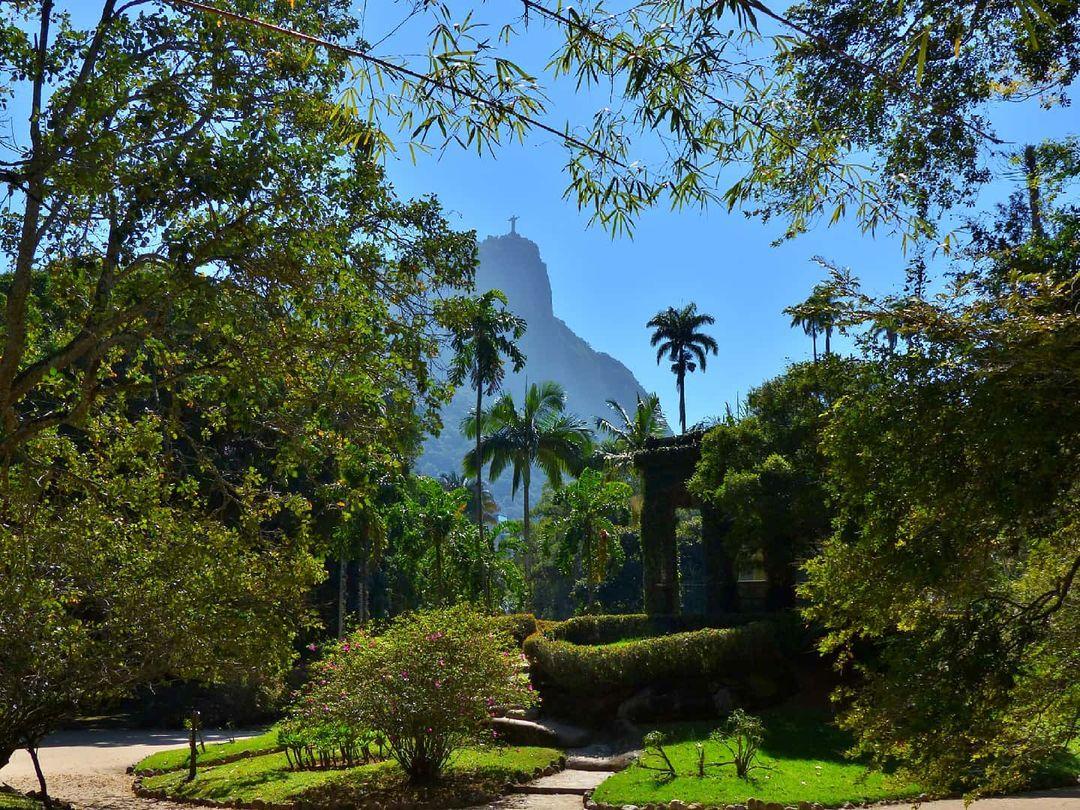 garden in jardim botanico