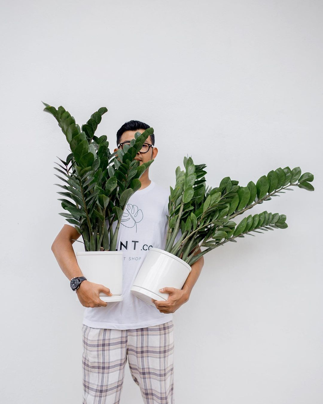 aeries sign man holding two zz plants