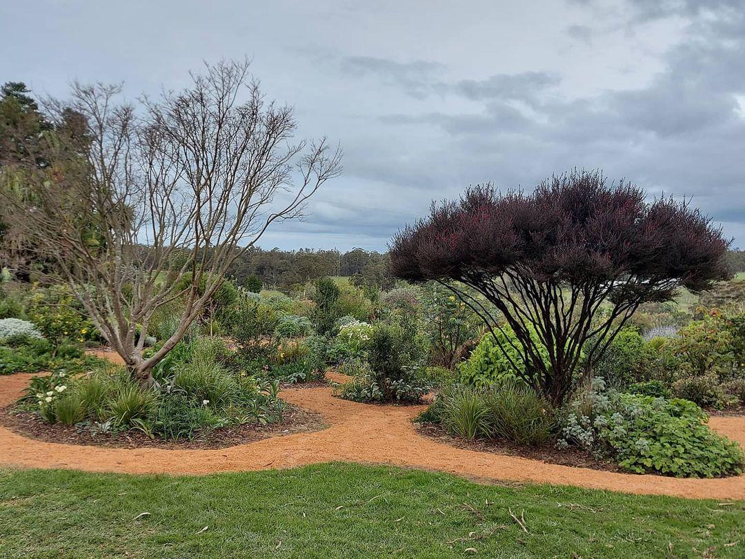 landscape garden with sawdust on walkway