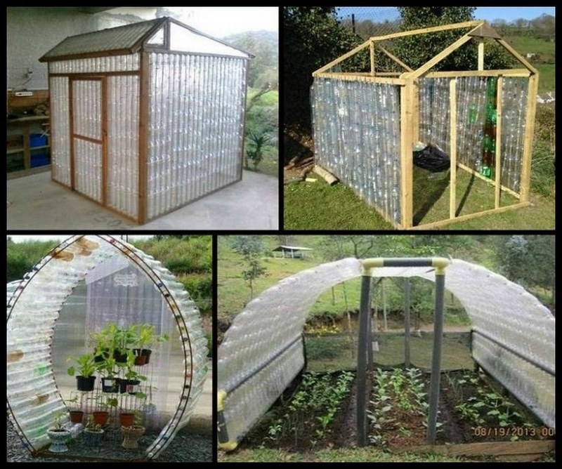 multiple diy greenhouse with plastic bottles