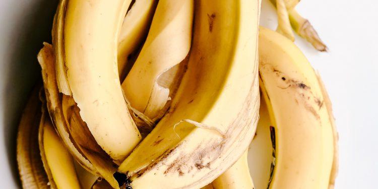 bundle of opened up bananas
