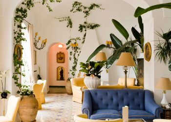 modern and chic interior decoration with indoor climbing plants