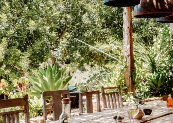boho outdoor farm to table set up